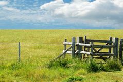 Gate with green meadow Royalty Free Stock Images