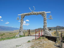Gate of horns. Royalty Free Stock Photo