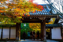 A gate of Japanese shrine Royalty Free Stock Photo