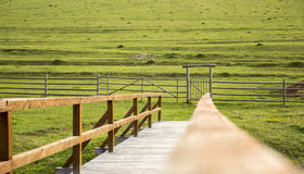 The gate Stock Photography