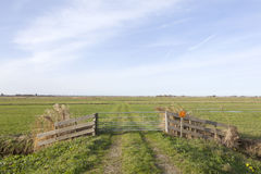 Gate and meadows in waterland near uitdam in noord-holland Royalty Free Stock Images