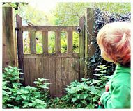 Gate of mystery boy wondering Stock Images