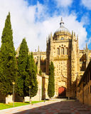 Gate of New Cathedral of Salamanca Stock Photography