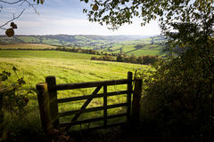 Gate onto Rolling British Countryside Stock Photo