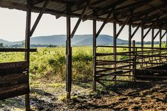 Gate Open into a Golden Sunlit Field. Photo of a gate in an open-air barn that is opened out into a golden, sunlit field. Mountains in the distance. Summer stock photo