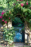 Gate overgrown with roses Stock Image