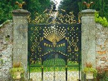 Gate. On Powerscourt Estate in Ireland.  Gold stars and wrought iron decorate this Stock Image