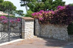 Gate with a stone fence and plants Stock Photography