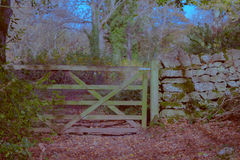 Gate in stone wall Royalty Free Stock Images