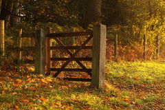 Gate at sunrise Royalty Free Stock Photos