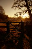 Gate sunrise Stock Photography