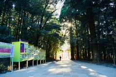 Gate of a temple in Kagoshima, Japan, with a lot of green trees royalty free stock image