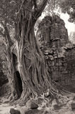 Gate of the temple of Ta Som in the ancient city of Angkor Stock Images