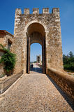 Gate to the bridge of Besalu. The Gate to the medieval bridge in Besalu, Spain Stock Images