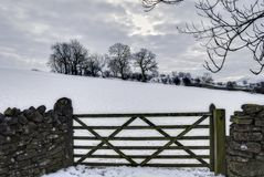 Gate in wintry countryside Stock Image