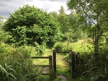 Through the gate. Wooden gate in nature with storm clouds brewing Royalty Free Stock Photography