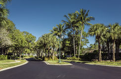 Gated community road in tropics Royalty Free Stock Photo