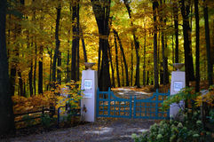 Gated Driveway, Fall Colors. A gated driveway on Snake Road in Lake Geneva, WI. surrounded by fall colors. The gate says House in the Wood (Private). This is stock photos