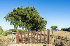 Gated driveway Stock Photos
