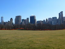 The Gates in Central Park. With green grass, blue sky, and the Midtown skyline royalty free stock image