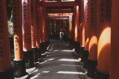 gates den japan toriien royaltyfria bilder
