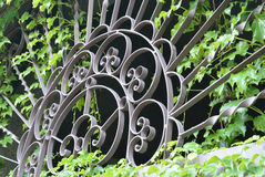 Gates and ivy Royalty Free Stock Photo