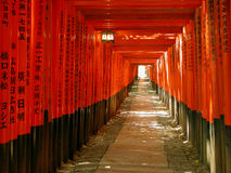 Gates tunnel. An interesting orange gates tunnel in the Inari Shrine in Kyoto,Japan Stock Photo