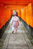 Gates tunnel. Inari torii gates - Fushimi Inari Shrine at Kyoto - Japan Stock Photos