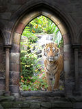 Gateway de jungle photo stock