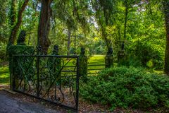 Gateway Overgrown With Greenery stock images