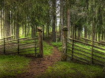 Gateway on forest path. An open gateway along a footpath through a fence in the forest Stock Photo