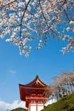Gateway of Kiyomizu Temple in Kyoto Japan. Gateway of Temple in Kyoto Japan. With Cherry Blossom and beautiful sky royalty free stock image