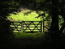 Gateway out of the woods Royalty Free Stock Photography