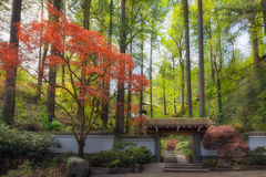 Gateway to Portland Japanese Garden Spring. Gateway entrance to Portland Japanese Garden in Spring Season Royalty Free Stock Images