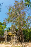 Gateway to Ta Som Temple, Siem Reap, Cambodia stock photo
