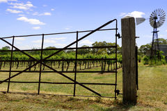 Gateway to the Vineyard Royalty Free Stock Photography