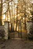 Gateway to the woods Sun Royalty Free Stock Images
