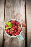 Gathered wild strawberries in a ceramic cup mint Royalty Free Stock Images