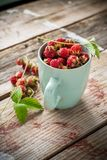 Gathered wild strawberries in a ceramic cup mint Stock Photo