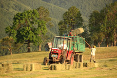 Gathering the bales of hay Stock Photography