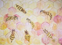 Gathering of bees in hexagon construction.