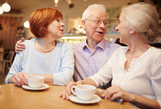 Gathering of buddies. Cheerful buddies enjoying time and talking in cafe Stock Images
