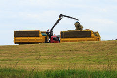 Gathering hay at dutch dikes, Duurse Waarden, the Netherlands Royalty Free Stock Image