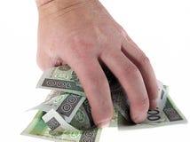 Gathering money. Gathering polish money isolated Royalty Free Stock Photo