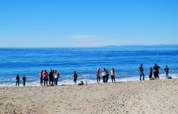 Gathering of people on seashore in Laguna Beach, Calfornia. Stock Photo