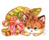 Gatinho animal engraçado watercolor ilustração royalty free