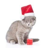Gatinho no chapéu vermelho de Santa com caixa de presente Isolado no branco Fotos de Stock