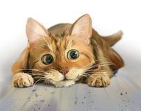Gatinho vermelho com os olhos grandes que encontram-se no assoalho ilustração royalty free
