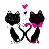 Gatinhos da ilustração Fotografia de Stock Royalty Free