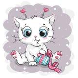 Gatito blanco hermoso con la caja de regalo Foto de archivo libre de regalías